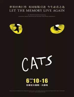 2020音乐剧猫CATS石家庄站