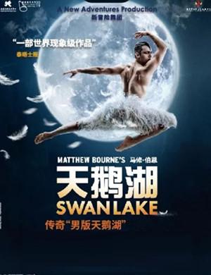 2020芭蕾舞剧天鹅湖苏州站