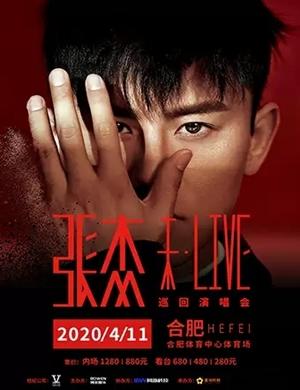 2020张杰合肥演唱会
