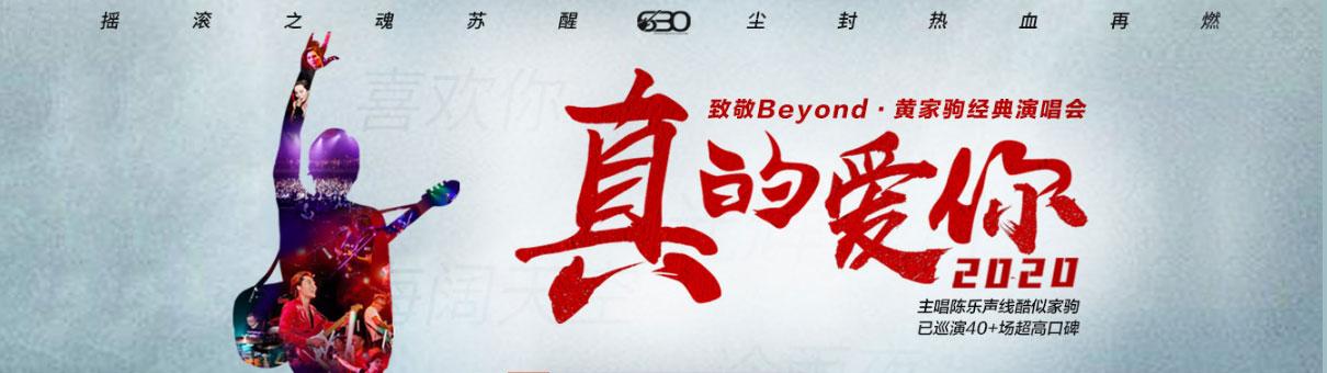 致敬beyond黄家驹演唱会