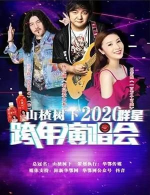 2020杨臣刚王若熙雪十郎黄石演唱会