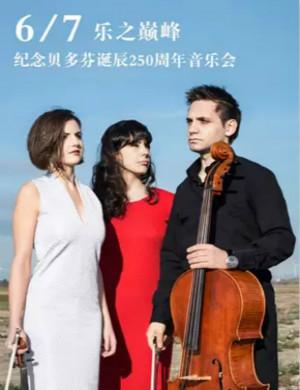 2020乐之巅峰武汉音乐会