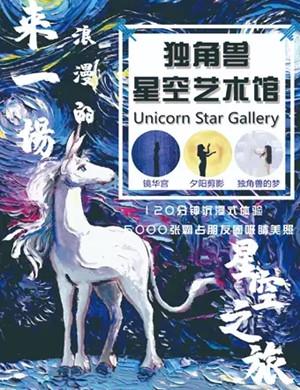 2020北京独角兽星空艺术馆