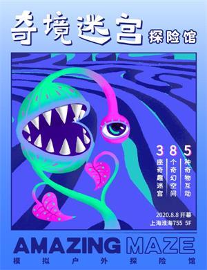 2020上海奇境迷宫探险馆