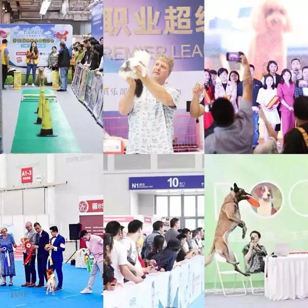 广州国际宠博会