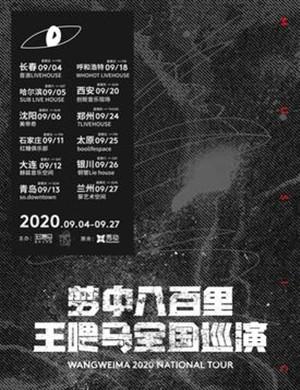 2020王喂马乐队郑州演唱会