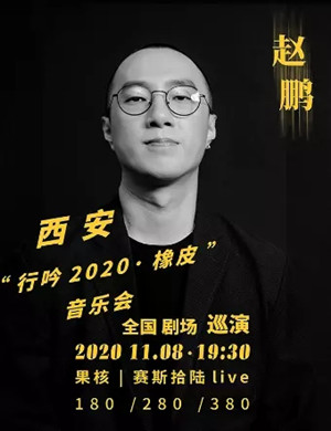 2020赵鹏西安演唱会