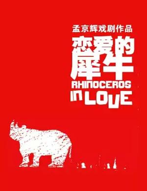 2020戏剧《恋爱的犀牛》北京站