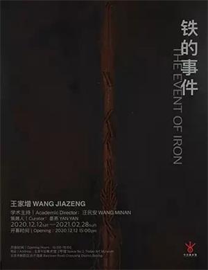 2020北京王家增铁的事件展览