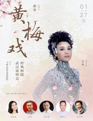 黄梅戏经典唱段武汉演唱会