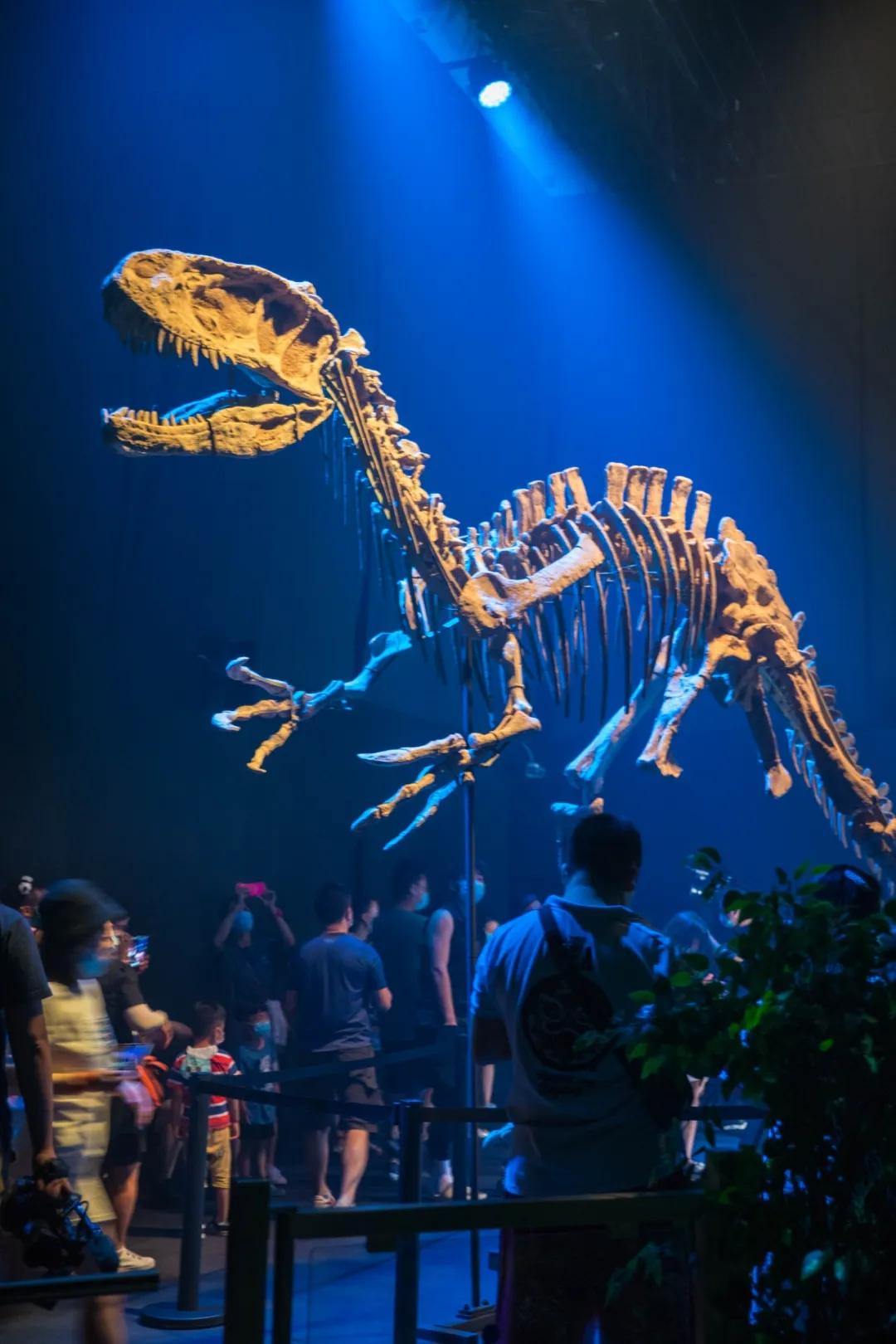 2021侏罗纪世界电影特展-广州站
