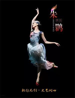 舞剧《朱鹮》杭州站