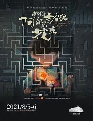 2021音乐剧献给阿尔吉侬的花束深圳站