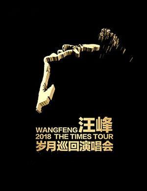 2018汪峰郑州演唱会