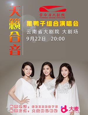 """【昆明】""""花好月圆"""" 黑鸭子2018演唱会-昆明站"""