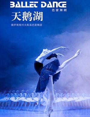 【宁波】2019俄罗斯柴可夫斯基芭蕾舞团《天鹅湖》-宁波站