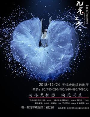 2018杨丽萍主演 大型舞剧《孔雀之冬》-无锡站