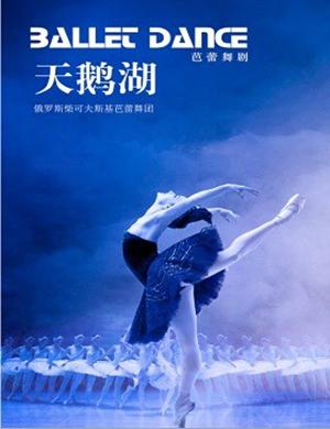 【合肥】2019俄罗斯柴可夫斯基芭蕾舞团《天鹅湖》-合肥站