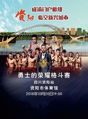 2018勇士的荣耀36-资阳站