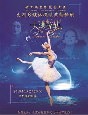 皇家芭蕾舞团深圳芭蕾舞天鹅湖