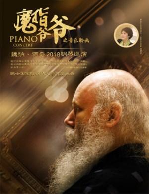 2018魏纳·佰奇武汉钢琴音乐会
