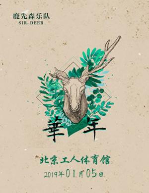 """2019鹿先森乐队""""华年""""全国巡演-北京站"""