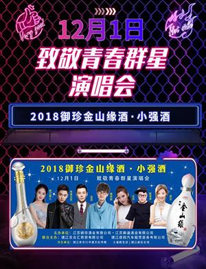 2018镇江致敬青春群星演唱会