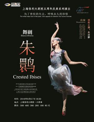 2019朱洁静领衔主演 舞剧《朱鹮》-上海站