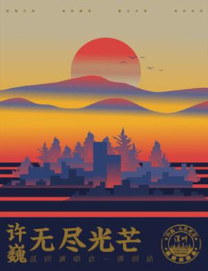 """【深圳】2019许巍""""无尽光芒""""巡回演唱会-深圳站"""