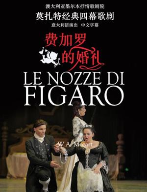 【郑州】2019多媒体歌剧音乐会《费加罗的婚礼》-郑州站