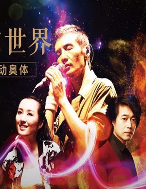2019不凡玺樾唱响世界 朴树群星演唱会-济南站