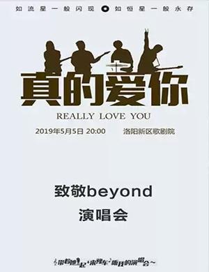 【洛阳】2019《真的爱你》致敬beyond演唱会-洛阳站
