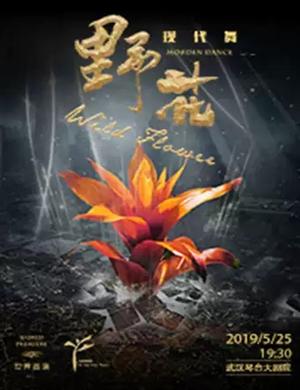 2019舞蹈剧野花武汉站