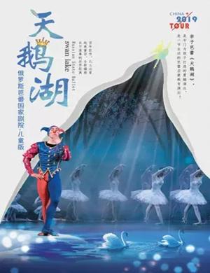 2019芭蕾舞剧天鹅湖绵阳站