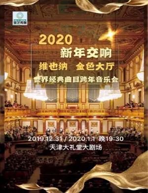 2019《维也纳金色大厅世界经典曲目跨年音乐会》-天津站