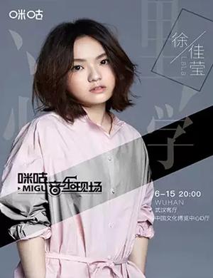 2019徐佳莹武汉演唱会