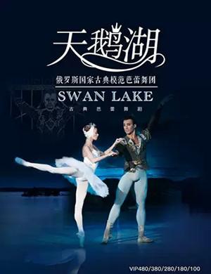 2019芭蕾舞剧天鹅湖珠海站