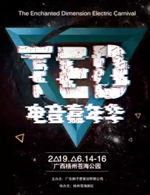 2019梧州TED电音嘉年华