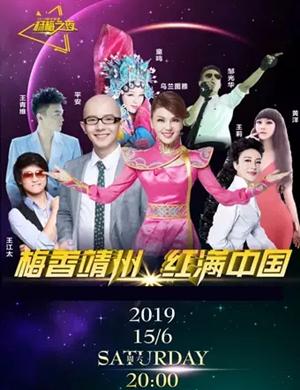 杨梅之夜·2019靖州杨梅节群星演唱会
