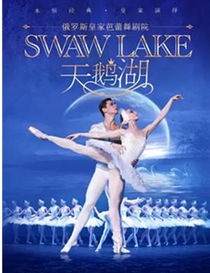 2020芭蕾舞剧天鹅湖广州站