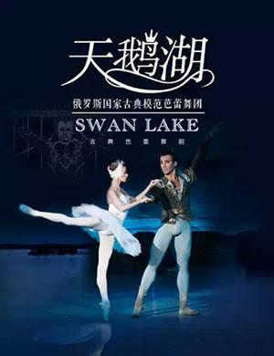 2019芭蕾舞剧天鹅湖太原站