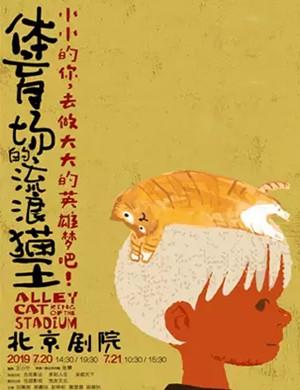 2019儿童剧体育场的流浪猫王北京站