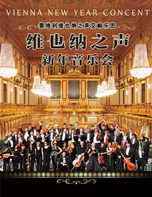 2020奥地利维也纳之声交响乐团新年音乐会-杭州站