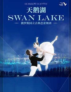 2019芭蕾舞团天鹅湖西安站