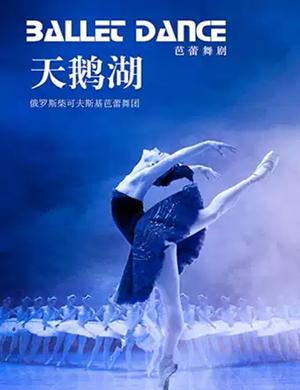 2019芭蕾舞剧天鹅湖杭州站