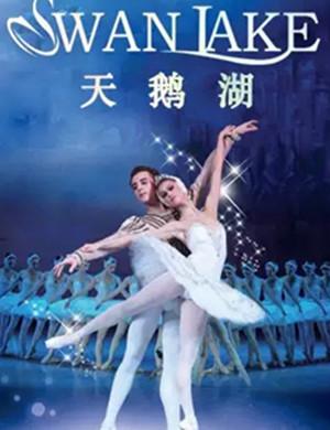 芭蕾舞剧天鹅湖厦门站