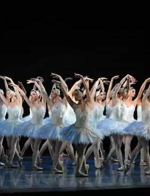 芭蕾舞劇天鵝湖廈門站