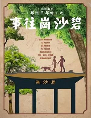2019小剧场戏剧《碧沙岗往事》第七轮-郑州站
