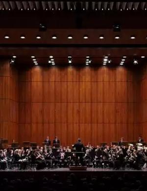 曼海姆爱乐交响乐团天津音乐会