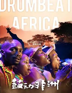 鼓动非洲天津音乐会